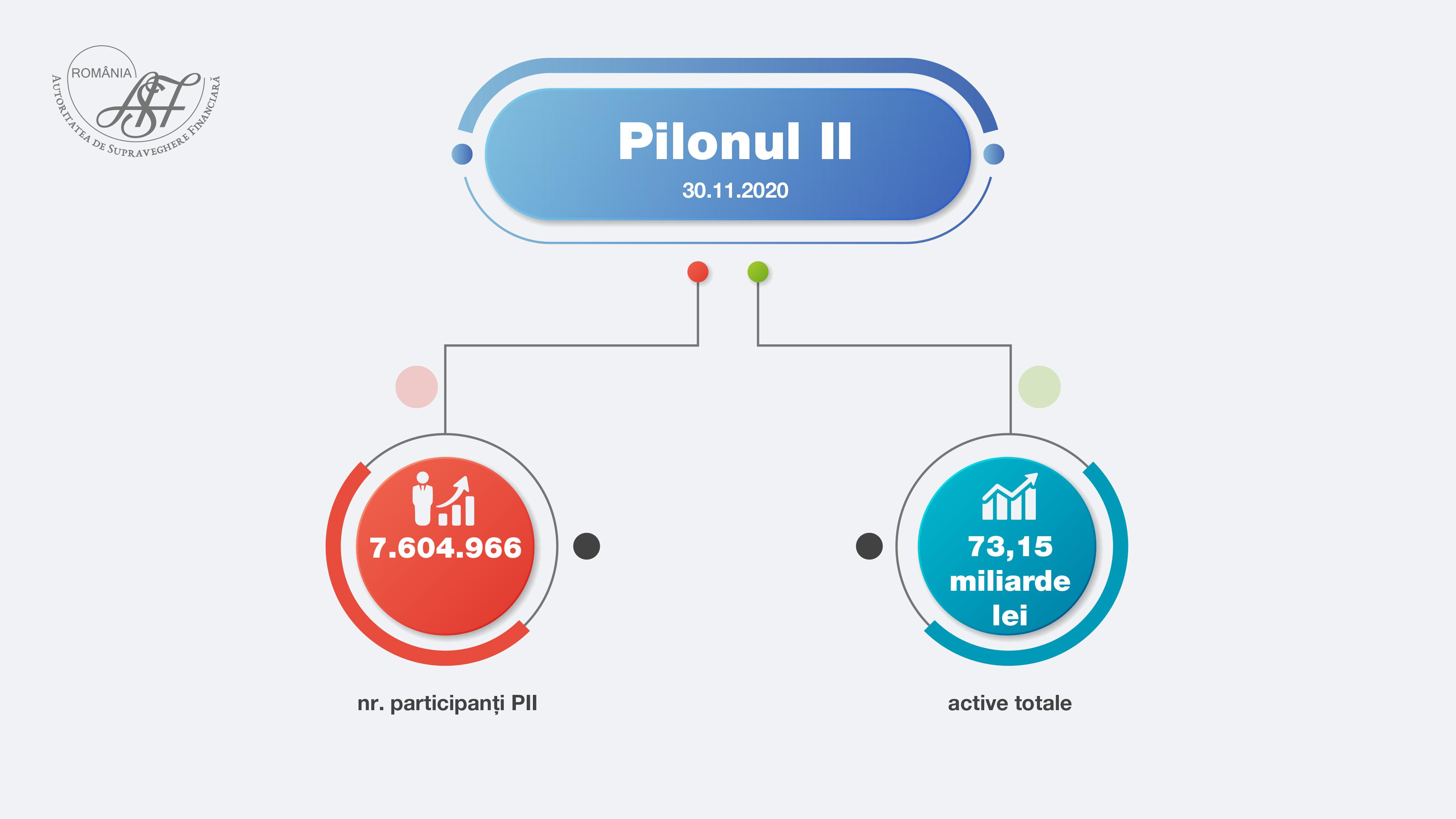 pilon 2  11.2020 site15122020